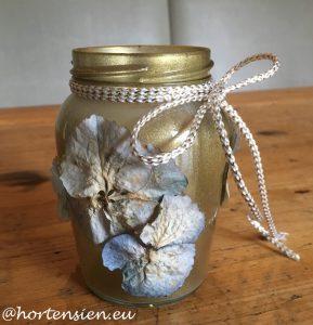 hortensienlicht6