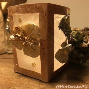 Laterne Hortensia4U Mini Hortensien Blüten getrocknet Sankt Martin Weihnachtsgeschenk
